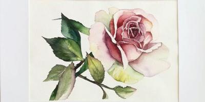 Онлайн курс Роза акварелью