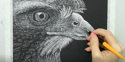 Завершаем рисунок орла. Дорабатываем детали - St'Art