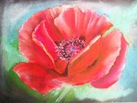 Референс для урока Цветы в пастельной живописи - St'Art