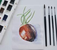 Работа ученика Дарья  Евлашева по курсу Ботаническая акварель