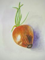 Работа ученика Анна Протопопова по курсу Ботаническая акварель